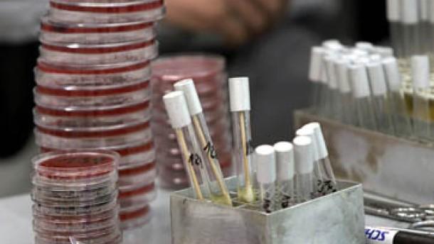 Andockstellen des Milzbrand-Giftes entdeckt