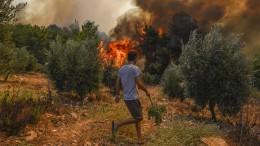 Große Hitze und starker Wind lassen neue Feuer ausbrechen