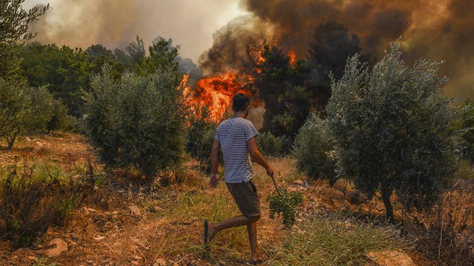 In der Nähe von Manavgat bei Antalya bedroht ein Waldbrand ein Dorf.
