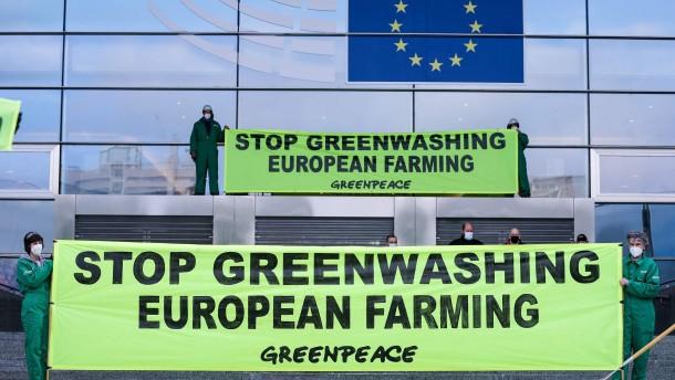Deutschlands strenge Vorgaben gegen Grünfärberei sollen EU-Regeln prägen