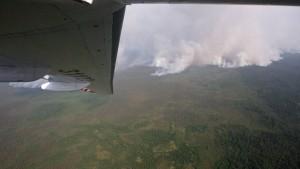 Waldbrände wüten weiter