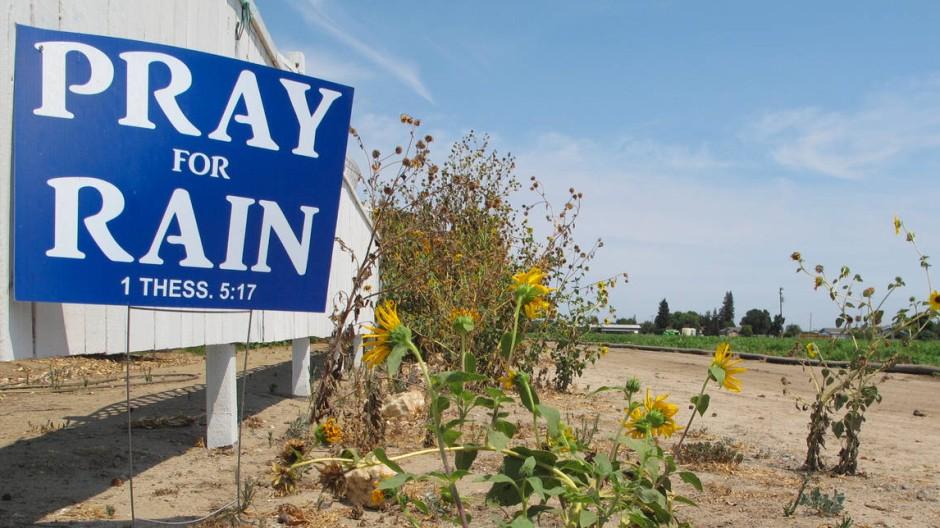 Dürre in Kalifornien: Schon seit letztem Sommer hat der Bundesstaat mit akuter Wasserknappheit zu kämpfen.