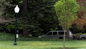 Wo ist Macrons Baum?