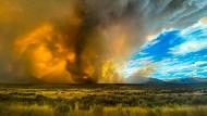 Dystopische Szenerie: Flächenbrände im Norden Kaliforniens, in Loyalton, ausgelöst durch die enorme Hitze im Westen Amerikas.