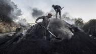 Jahrhundertealtes Handwerk: Kohleherstellung in Serra San Bruno