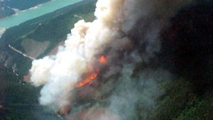 Satelliten helfen gegen Waldbrände