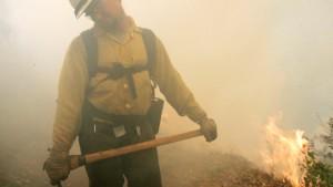 An 1000 Stellen brennt der Wald