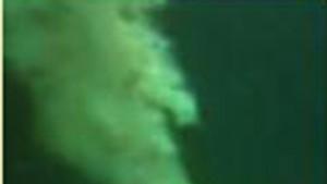 Mit Unterwasserrobotern gegen Ölpest