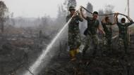 Kampf gegen die Flammen: Indonesische Soldaten löschen nahe der indonesischen Stadt Palangka Raya einen Brand.