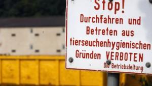 Ausbruch in zwei bayerischen Entenmastbetrieben