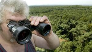 In Deutschland steigt die Waldbrandgefahr