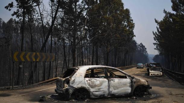 Todeszahl bei Feuerinferno in Portugal steigt auf 62