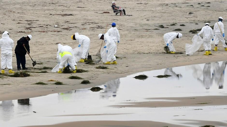 Newport Beach: Wo sich sonst Surfer sonnen, finden nun Säuberungsarbeiten wegen eines Öllecks statt.