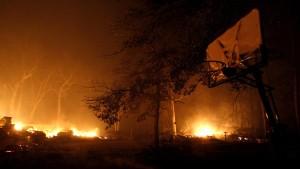 Flächenbrände zerstören mehr als 10.000 Hektar Land