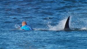 Man muss doch die Haie da irgendwie wegsperren können