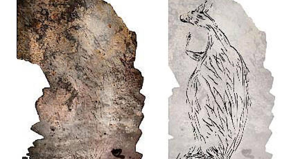 Zwei Meter groß: Mehr als 17.000 Jahre alt ist die Felszeichnung eines Kängurus in Kimberley in Westaustralien. Die Bildmontage zeigt links ein Foto des Felsens, rechts eine zu Papier gebrachte Kopie davon.