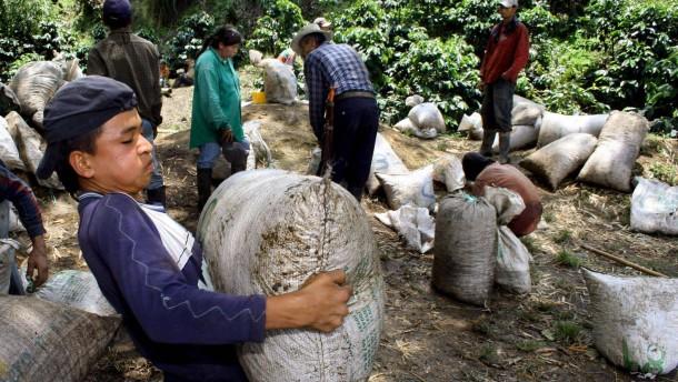 Verbraucher in Industrieländern tragen stark zu Artenschwund bei