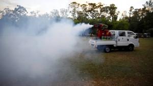 Atomwissenschaftler machen die Zika-Mücke unfruchtbar
