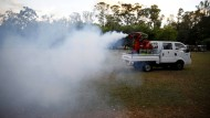 Weniger umweltschädigend als in Uruguays Hauptstadt Montevideo wird in Wien das Zika-Virus bekämpft: Nämlich indem die Mücken unfruchtbar gemacht werden.