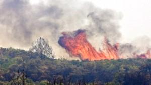 Mit Buschbränden übersät