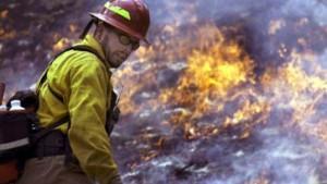 Waldbrände in den USA außer Kontrolle