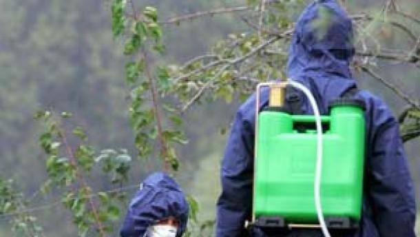 Gefährliches Vogelgrippevirus in Rumänien bestätigt
