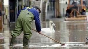 Hochwasserwelle erreicht Saale und Elbe