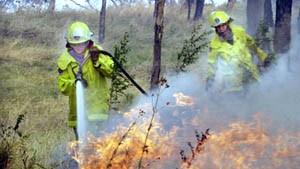 Buschbrände bedrohen Sydney