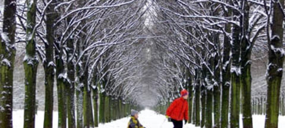 Weiße Weihnachten.Ausblick Wettervorhersage Verheißt Weiße Weihnachten Gesellschaft