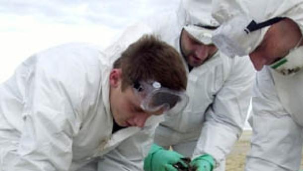 Schweröl verschmutzt hunderte Strände in Frankreich