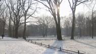 Der Norden und Osten Deutschlands befinden sich nach Angaben des Deutschen Wetterdienstes unter dem Einfluss eines sibirischen Hochdruckgebiets. Am Samstag zeigten frostresistente Donauschwimmer im bayerischen Neuburg bereits, dass Kälte sogar Spaß machen kann.