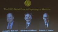 Nobelpreis für Medizin geht an Deutschen und zwei Amerikaner