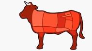 Fleisch ist kein Gemüse: Die Zubereitung tierischer Produkte steht in der Kochausbildung im Mittelpunkt.