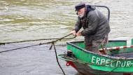 Fischer Hell fischt für die Forschung
