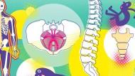 Beschwerden am Steißbein: Grund für verschiedene Schmerzen im Körper.