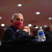 Anthony Fauci, Direktor des nationalen Instituts für Allergien und Infektionskrankheiten, bei der Anhörung vor dem amerikanischen Senat am Dienstag, 30. Juni.