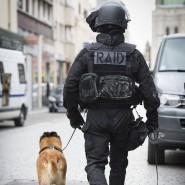 Ein Mitglied der französischen Eliteeinheit RAID bei dem Einsatz gegen den Paris-Attentäter Abaaoud im vergangenen November. Nach den Schüssen in Port-Marly hat die Polizei die Eliteeinheit zur Hilfe gerufen.