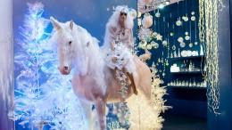 """""""Ökologisch gesehen ist die Weihnachtszeit eine Katastrophe"""""""