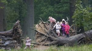 """Gebt den Kindern Wald"""