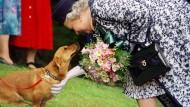 Wie süß: Queen Elizabeth streichelt einen ihrer Corgi-Hunde vor fast 20 Jahren. Heute trauert sie um einen ihrer kleinen Gefährten.