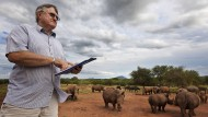 Nashornzüchter: John Hume mit seiner Herde auf seiner Fam in Klerksdorp in der Nähe von Johannesburg.
