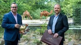 Kamele als unterschätzter Rohstoff