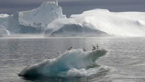 Grönland hat 260 Milliarden Tonnen Eis verloren
