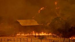 Kalifornien kämpft wieder gegen Buschbrände