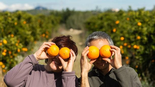 Wenn in Spanien die eigenen Orangen angebaut werden
