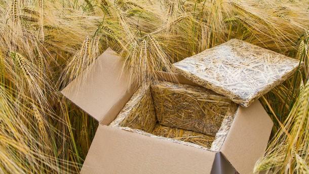Diese Verpackungsbox kann auf den Kompost