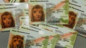"""Kolumne """"Mein Urteil"""": Darf der Chef meinen Personalausweis einscannen?"""