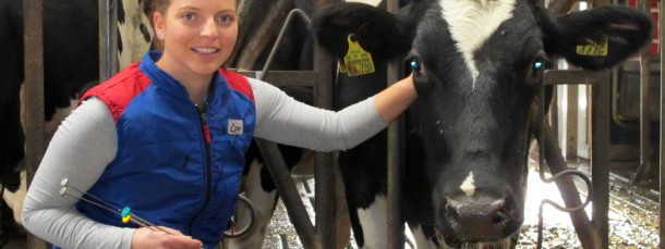 """Besamungstechnikerin Melissa Theis mit einer Kuh: """"Es ist ein schöner Job, ich schenke jeden Tag Leben"""", sagt sie."""