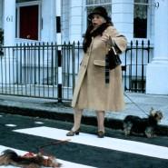"""Wäre das Schoßhundmassaker heute verboten? 1988 drehte Charles Crichton den Film """"Ein Fisch namens Wanda""""."""