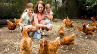 Hühnerstreicheln bei Rent  a Huhn in Seligenstadt